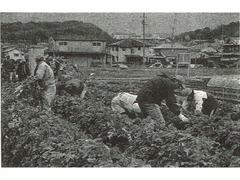平成29年度(第9期生)せいか農業塾 受講生募集